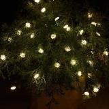 Sirius LED Lichterkette Silke, 40 LED