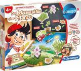Galileo - Der Lebenszyklus einer Pflanze