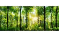 Innova Glas Art grüner Wald