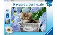 Puzzle Kleine Katze
