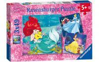 Puzzle DPR:Abent.d.Prinzessinnen