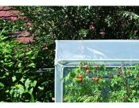Windhager Tomatenhaus AluProfi