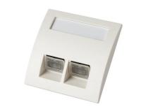 digitalSTROM IP dS-POF Wall Socket 2xSMI