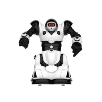 WowWee Mini RC Robosapien