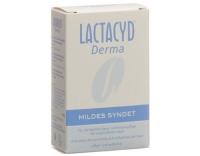 Lactacyd Derma Mildes Syndet