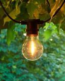 Sirius LED Leuchtmittel Tobias Transparent